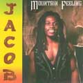 Jacob Odametey - Mountain Feeling